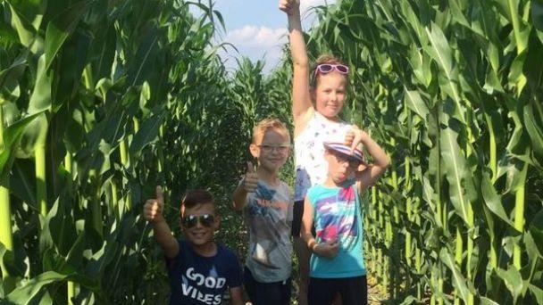 Kukuričné bludisko v našej obci